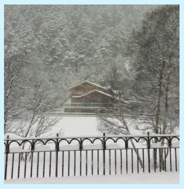 Xmas-details-snow